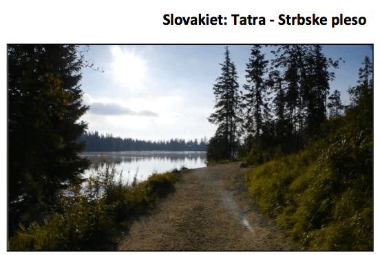 videorehab-slovakiet