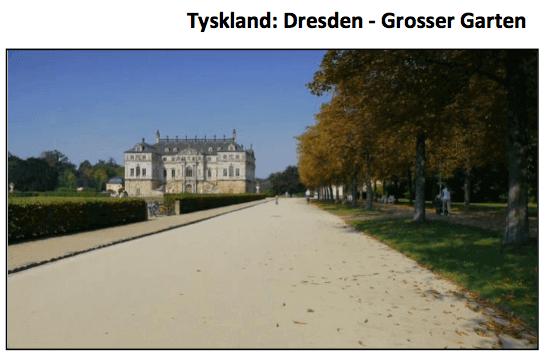Videorehab Tyskland Dresden