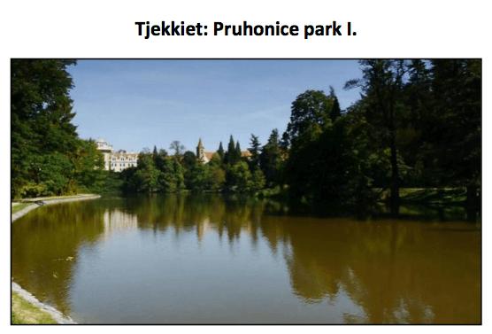 VideoRehab Tjekkiet
